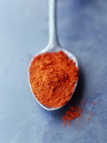 Ground Paprika on Spoon
