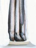 Four Smoked Eels in a Box Papier Photo par Peter Medilek