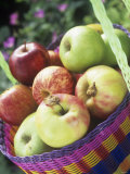 Apples (Granny Smith and Gala) in a Basket
