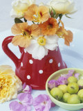 Flowers in Jug and a Bowl of Wild Apples