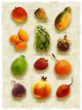 Exotic Fruit in Style of a Painting