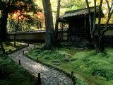 Moss Garden  Saiho-Ji Temple (Kokedera)  Kyoto  Japan