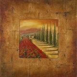 Bella Toscana I