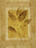 Golden Glow Leaf I