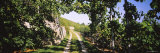 Gravel Road Passing Through Vineyards  Vaihingen an Der Enz  Baden-Wurttemberg  Germany
