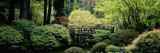 Garden  Japanese Garden  Washington Park  Portland  Oregon