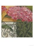 Hydrangea Detail II