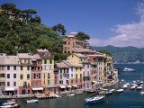 Coastal View  Village and Harbour and Yachts  Portofino  Liguria  Italy