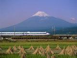 Mount Fuji  Bullet Train and Rice Fields  Fuji  Honshu  Japan