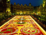 Grand Place  Floral Carpet  Brussels  Belgium