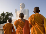 The Great Seated Buddha at Mihintale  Mihintale  Sri Lanka