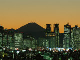 City Skyline and Mount Fuji  Night View  Tokyo  Honshu  Japan