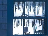 Fish Shack Window  Menemsha  Martha's Vineyard  Massachusetts  USA