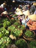 Central Market  Hoi An  Central Vietnam  Vietnam