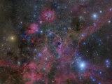 The Vela Supernova Remnant