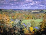 Autumn Landscape  Surrey  England