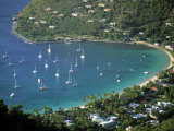 Cane Garden Bay  Tortola  British Virgin Islands  Caribbean