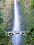 Multnomah Falls  Colombia River Gorge  Oregon  USA