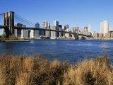 Brooklyn Bridge and Manhattan  New York City  USA