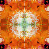 Moods of Mandala  no 3