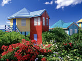 Providence Island  Bahamas  Caribbean
