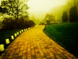 Golden Brick Road Lined with Luminaries