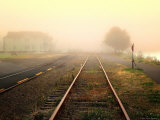 Foggy on the Tracks