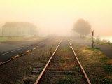 Foggy on the Tracks