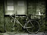 12 Days of Christmas Bicycle