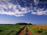 Meadow Bank  Prince Edward Island  Canada