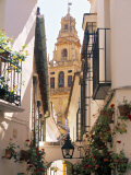 Cordoba  Andalucia  Spain