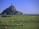 Mont St Michel  Manche  Normandy  France