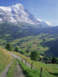 Eiger  Grindelwald  Berner Oberland  Switzerland