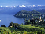Spiez  Lake Thun  Berner Oberland  Switzerland