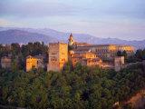 Alhambra Palace  Granada  Granada Province  Andalucia  Spain