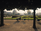 Jardin Des Tuileries  Paris  France