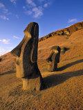 Moai Quarry  Easter Island  Chile
