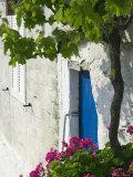 Assos  Kefalonia  Ionian Islands  Greece