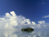 Tropical Island  Raratonga  Cook Islands