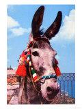 Kitsch Donkey