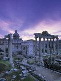 The Forum  Rome  Italy