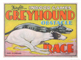 Greyhound Obstacle Race