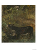 Donkey with Foal: Study for The Cornfield