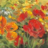 Oriental Poppy Field I
