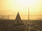 Sailboat on San Francisco Bay  San Francisco  California