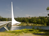 Scenic Walking Bridge over the Sacrament River  Redding  California