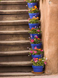 Staircase Decorated with Flower Pots  Santa Fe  New Mexico