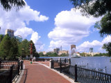Skyline from Walkway by Lake Eola  Orlando  Florida