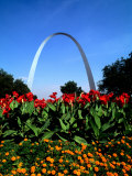 Famous St Louis Arch  Archway Park  St Louis  Missouri
