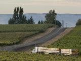 Columbia Crest Winery  Yakima  Washington